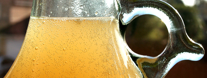 Elderflower wine fermenting in demijohn
