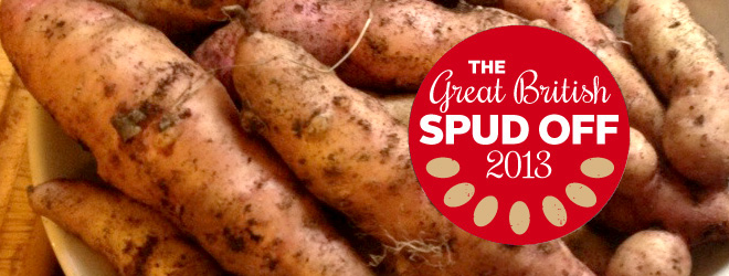 Spud Off 2013 Results