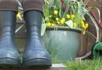 Camminare Polish Boots