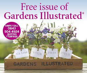 Free-Issue-Web-Banner-TTGBFR515-300x250.jpg