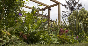 Tracey Parker Gold Medal Garden