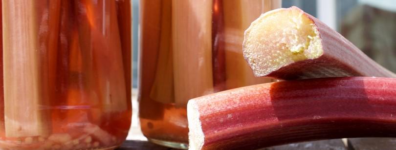 Rhubarb Pickle Jars