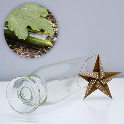 Victorian Cucumber Straightener