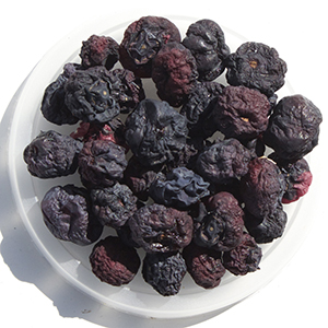 Dehydrating dried fruit blueberries