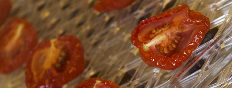 Andrew James dehydrator tomatoes