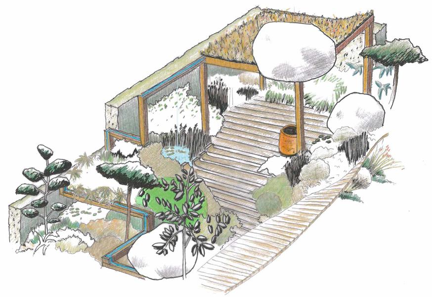 Propagating Dan Chelsea Garden