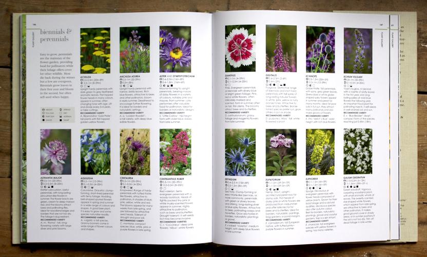 Plant Directory New Wild Garden