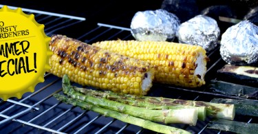 Barbeque recipe vegetable ideas