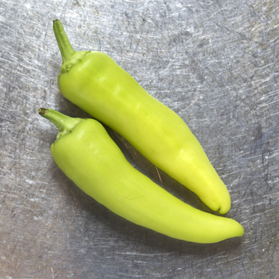how to grow hungarian hot wax chilli