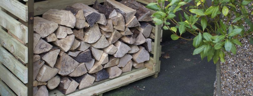 Store wood for winter