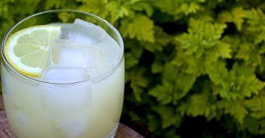 make the perfect greyhound cocktail