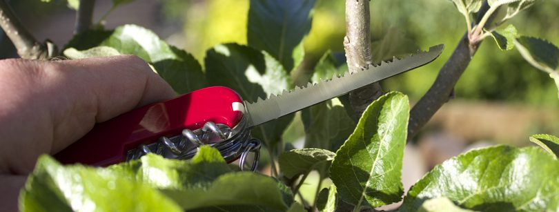 Sue Swiss Army Knife Garden Cutting