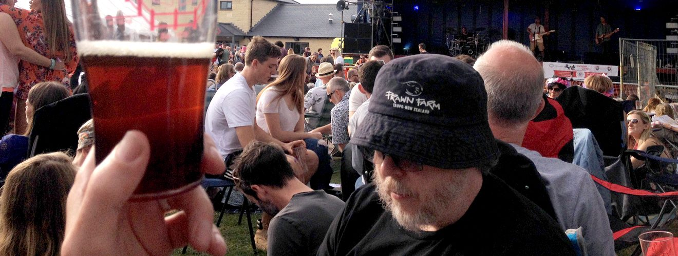 festival goers at frocester