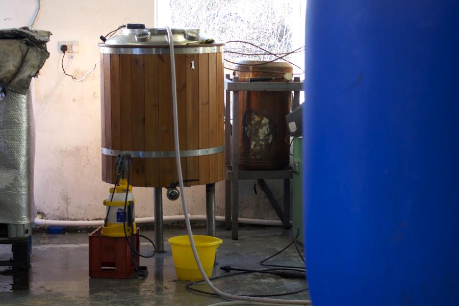 calamus root beer fermenter
