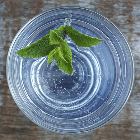 minto sprig gin and tonic