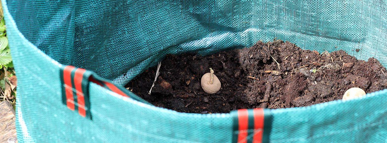 Vine Rituals Sack for Potatoes