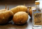potato gin and vodka